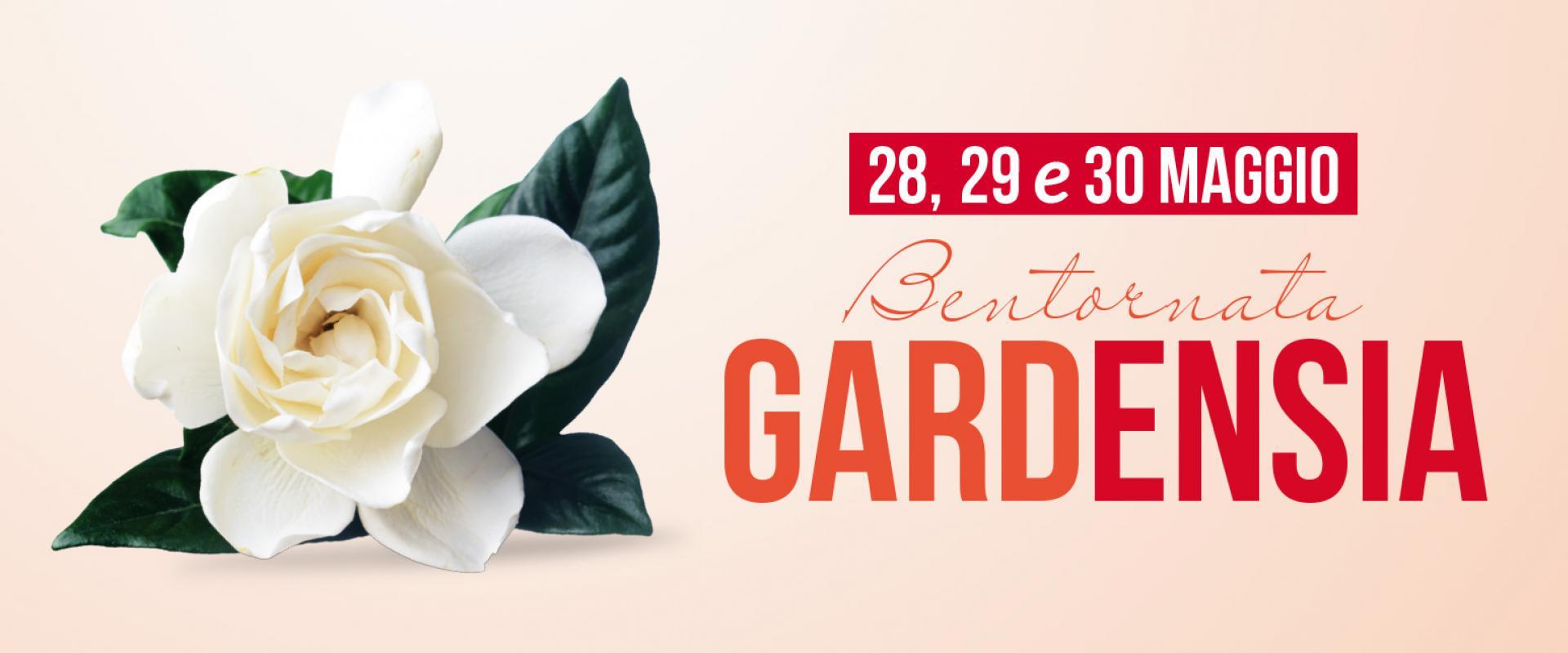 Bentornata Gardensia